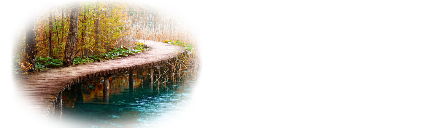 MOverland Consulting